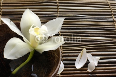 bowl of orchid, petal on bamboo mat