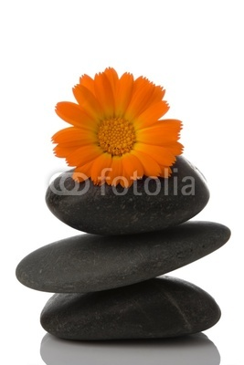 spa stone and orange flower on white background